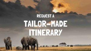 Tailor-Made Safari Tanzania