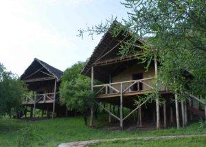 sangaiwe tented lodge, tarangire, tanzania