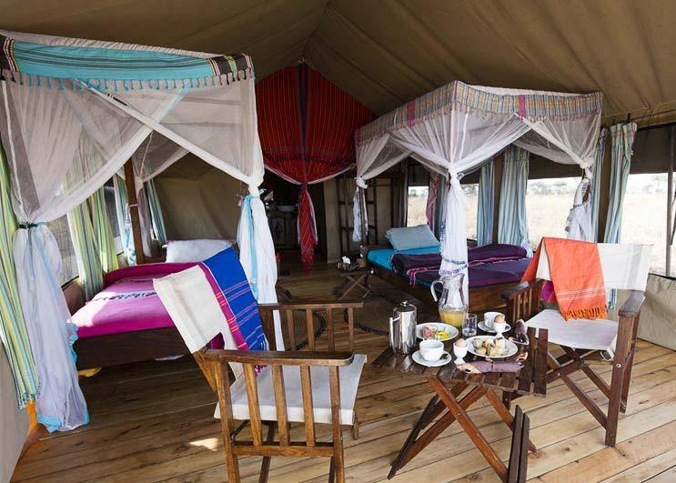 tingitana tented camp, serengeti, tanzania