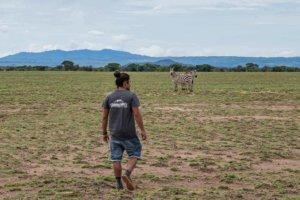 Enduimet Wildlife Management Area Walking Safari