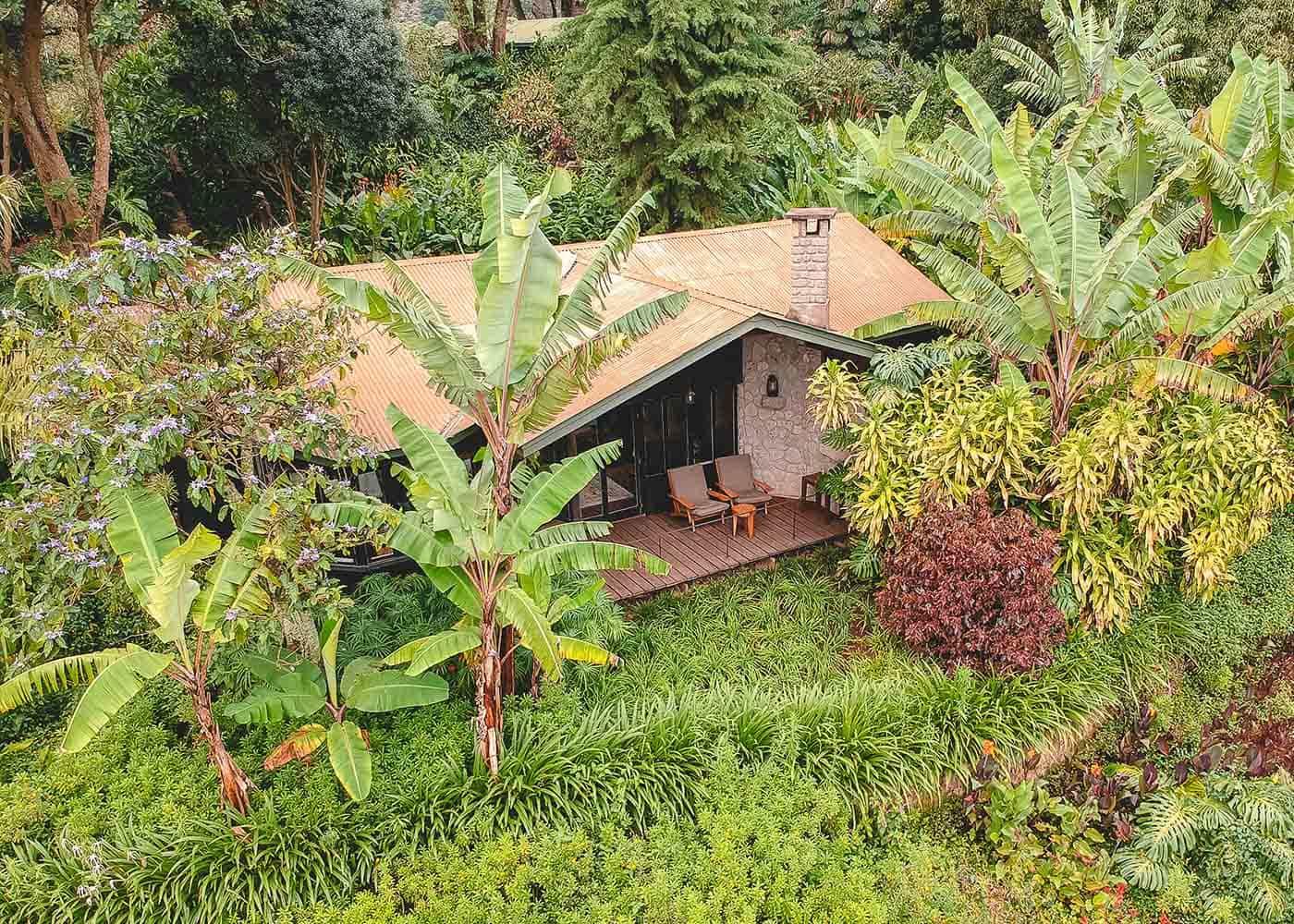 Gibb's Farm Karatu